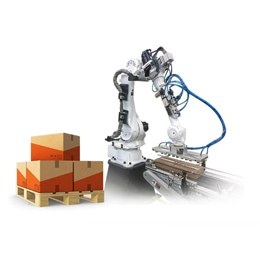 ZZAG Robotic Palletizer